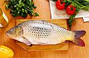 Паразиты речных рыб провоцируют рак печени