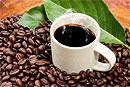 Португальские ученые поведали о выгоде кофеина для почек