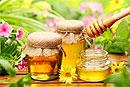 Мед - одно из любимых лакомств печени