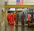 Американские заключенные покинут тюрьму в обмен на почку